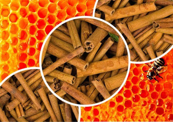 Мед и корица - смесь, которая изменит вашу жизнь к лучшему...