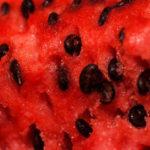 <b>И от арбузных семечек есть польза для здоровья</b>
