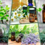 <b>Что такое эфирные масла и чем они полезны?</b>