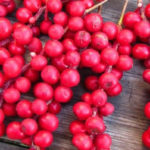<b>Известно ли вам о пользе ягод лимонника?</b>