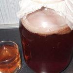 <b>Полезен ли напиток из чайного гриба?</b>