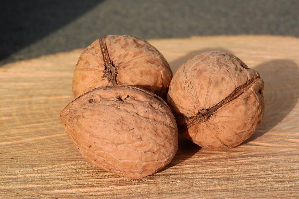 Три грецких ореха в день продлевают жизнь