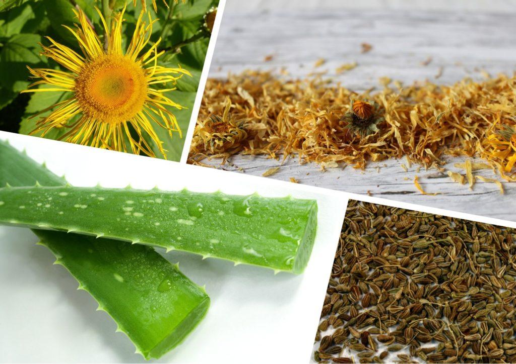 Какие травы помогают при пониженной кислотности