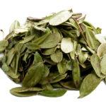 <b>Какие целебные напитки можно приготовить из листьев брусники?</b>