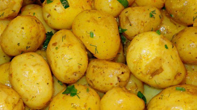 Вареный картофель польза и вред для здоровья