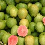 <b>Гуава - что это за фрукт и чем полезен?</b>
