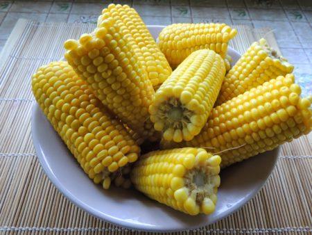 Полезна ли вареная кукуруза в початках?