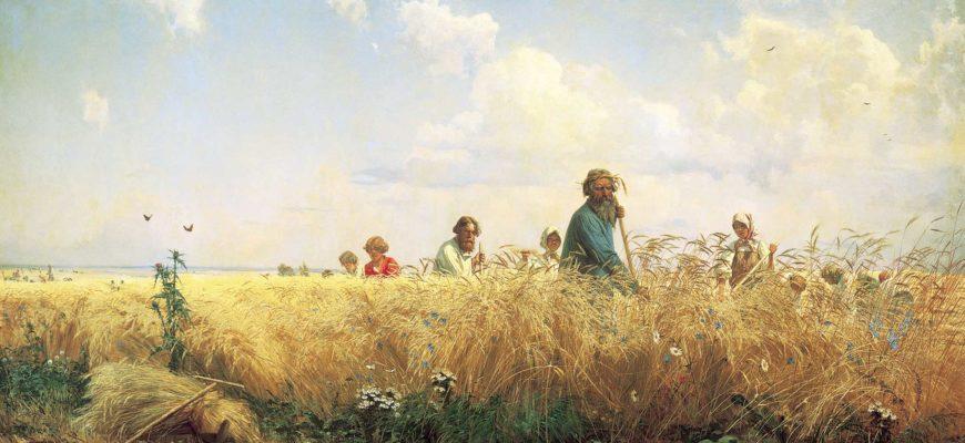 что называют житом